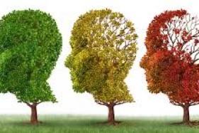 Vacina que impede Alzheimer em animais deve ser testada em humano